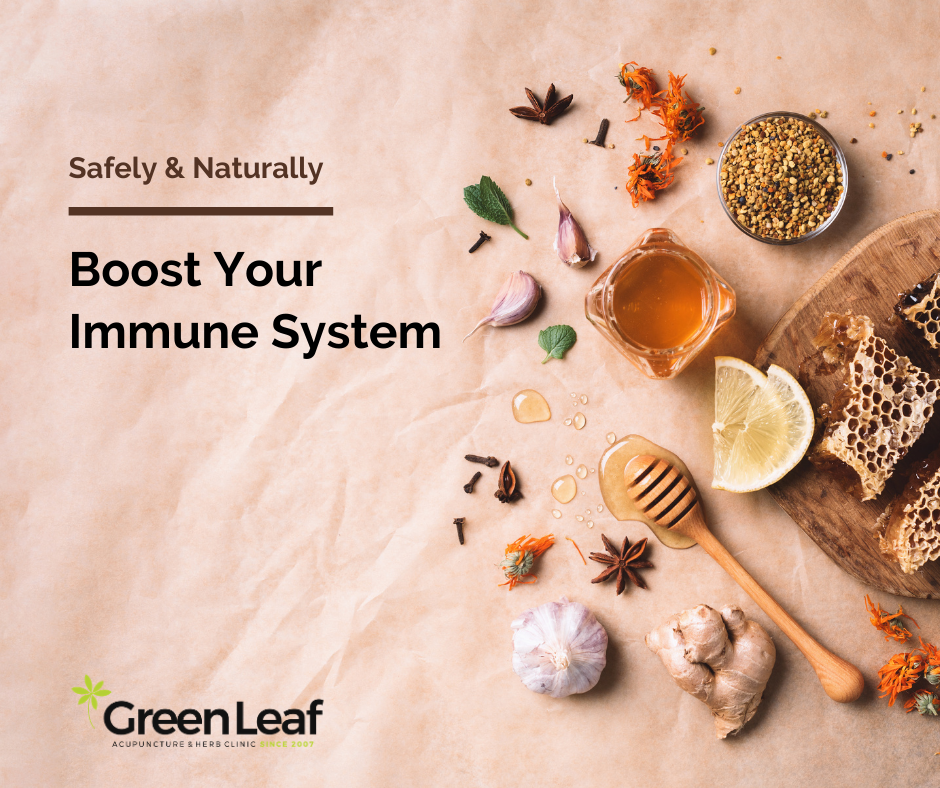immune system, eastern medicine, greenleaf acupuncture clinic