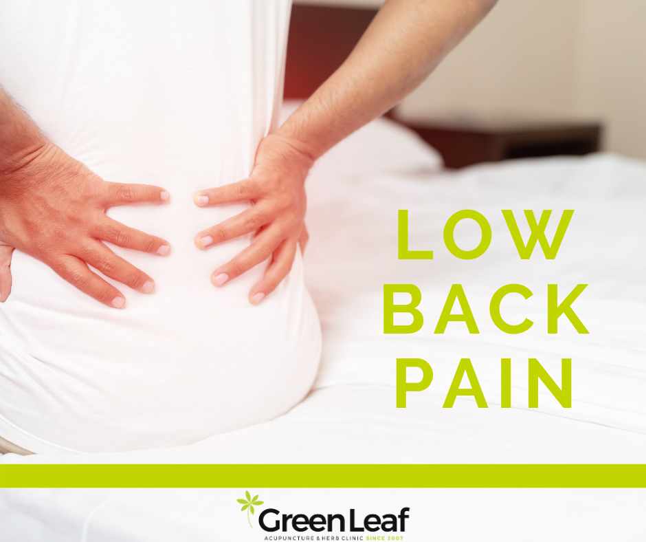 low back pain, chronic back pain, acupuncture, tcm, green leaf acupuncture and herb clinic